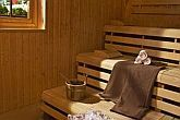 Sauna in Kur- und Wellnesshotel Heviz - Health Spa Resort Heviz - Wellnessurlaub in Ungarn